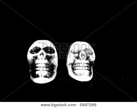 Two Skulls on black Background