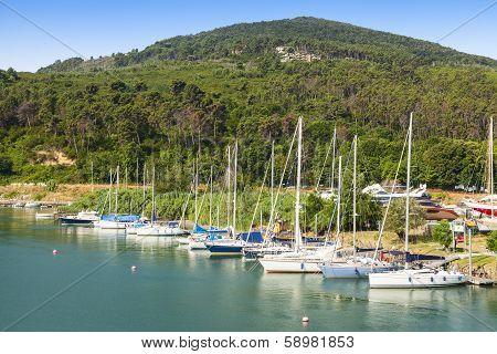Sailboats Port