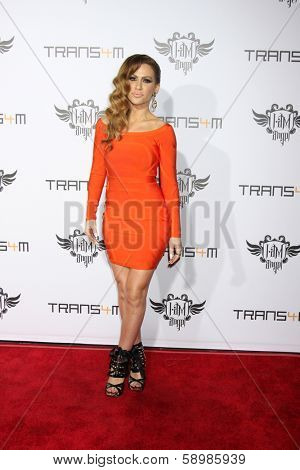 LOS ANGELES - JAN 23:  Kimberly Cole at the Annual Trans4m Benefit Concert at Avalon on January 23, 2014 in Los Angeles, CA