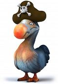 stock photo of dodo  - Dodo pirate - JPG
