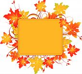 pic of fall leaves  - Fall colors adorn background - JPG
