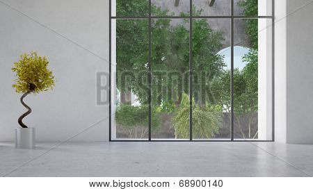 Large floor-to-ceiling glass window in a white wall overlooking a courtyard with plants with a decorative indoor plant with twirling stem alongside