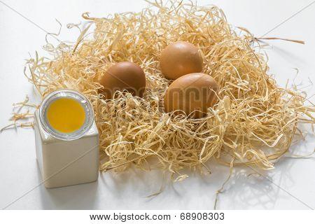 Gu10 Led Bulbs Look Like Yolk Of An Egg In Egg Holder And Eggs