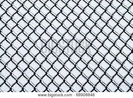 Frozen Medium Chain-link Fence Pattern.