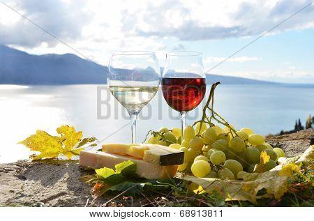 Сонник виноделие