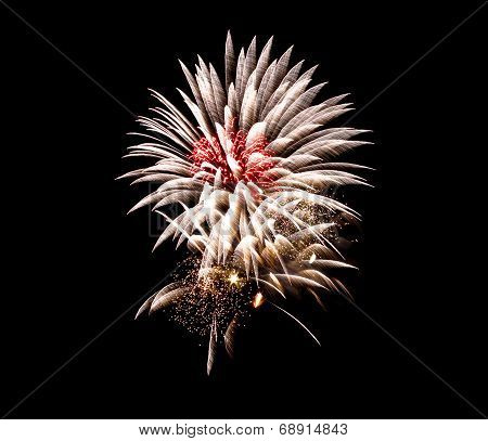 Vibrant fireworks on July 4th against a nice clear black night sky