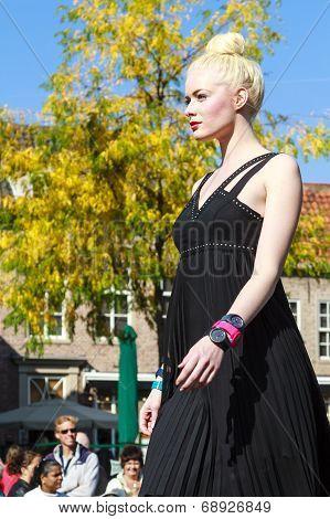 Blond Model