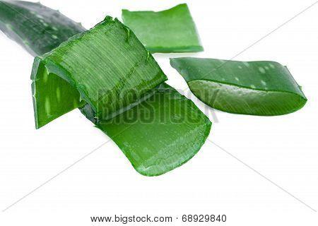 aloe vera leaf and slices