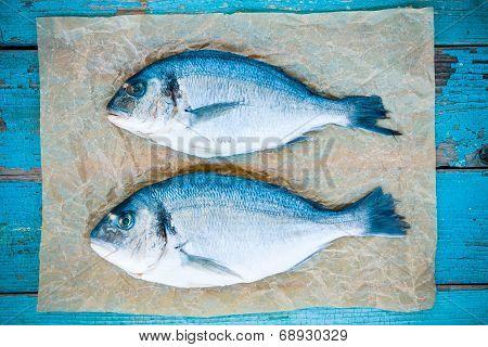 Two Raw Dorado Fishes