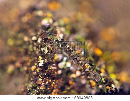Fantastic Background, Magic Of A Stone, Rainbow In Rock (big Collection ).macro