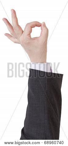 Okay Signal - Hand Gesture