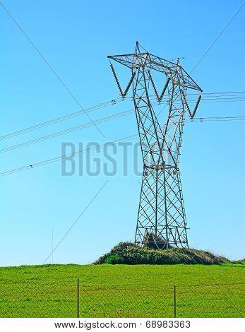 Pylon On The Grass