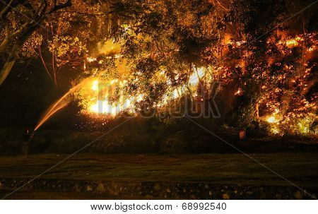 PUCHONG, MALAYSIA - JULY 26, 2014: A fire-fighter sprays water into the burning bushes in a forest fire at the foot hills of the Air Hitam Forest Reserve in Puchong, Malaysia.