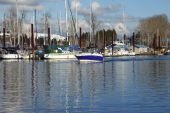 picture of bayou  - A passing boat in a bayou in Portland Oregon - JPG