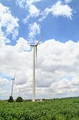 image of cassava  - Wind turbine in cassava farm for generating electricity - JPG