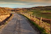 stock photo of bute  - Peaceful scottish scenery at sunset  - JPG