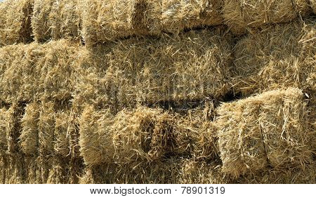 Stacked Straw Hay Bails