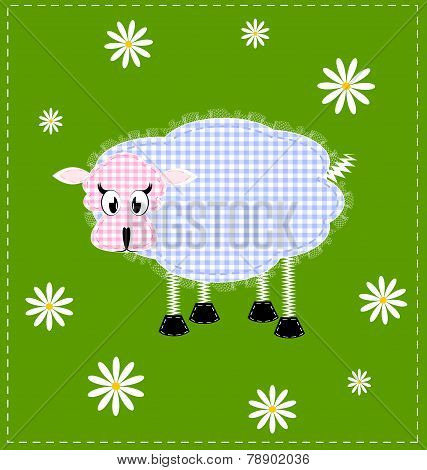 image of a lamb