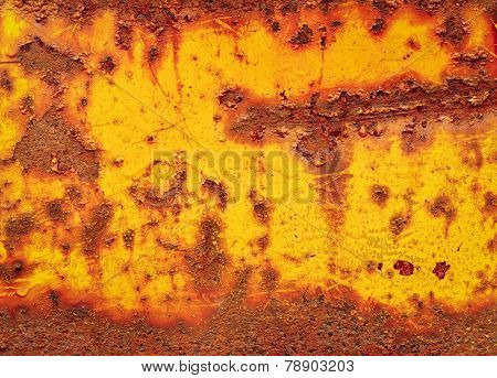 Yellow Rust Texture