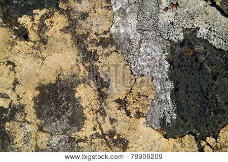 Lava-stone wall