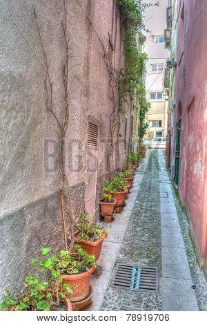 Narrow Backstreet In Sassari Old Town In Hdr
