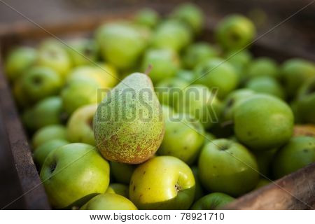 Green Pear On Apples Background In Box