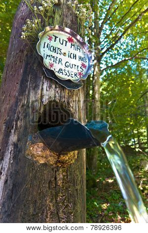 fresh drinking water from a source to a fountain in the forest