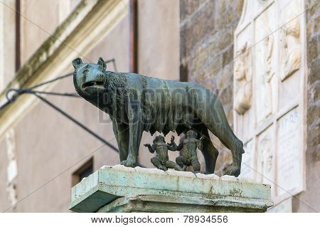 Capitoline Wolf, Rome