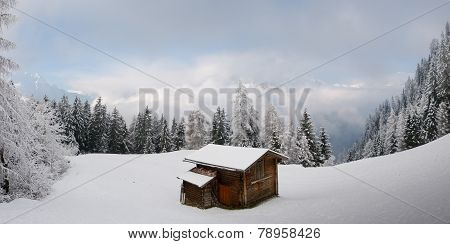 Ski hut on the forest glade