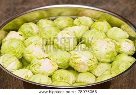 Raw sprouts in a pan