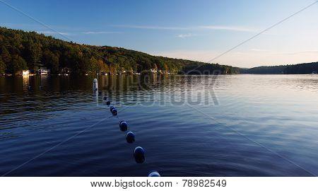 Swim Lines At The Lake