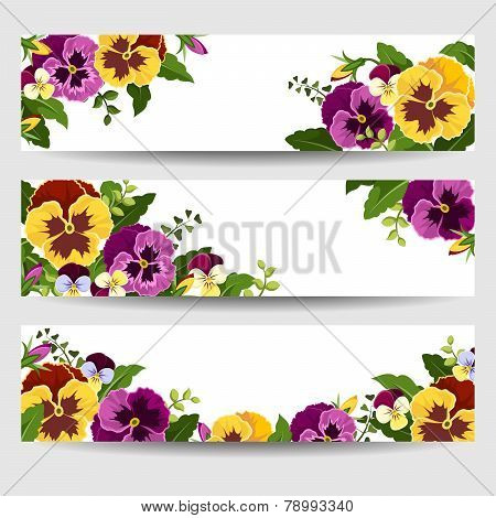 Banners with colorful pansy flowers. Vector illustration.