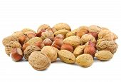 foto of mixed nut  - Mixed nuts - JPG