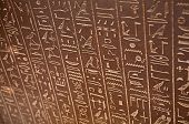 pic of hieroglyphic  - Egyptian hieroglyphs on the wall - JPG