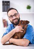 image of veterinary clinic  - Veterinary clinic - JPG