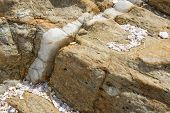 stock photo of calcite  - Calcite vein in rock at Rocky Point Tangalle Southern Province Sri Lanka Asia - JPG