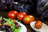 pic of chicory  - Mixed salad with red chicory and tomato - JPG