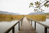 pic of marshes  - Constitution Marsh is a 270 acre wildlife sanctuary on the east coast of the Hudson River - JPG