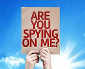 picture of peeping tom  - Are You Spying On Me - JPG