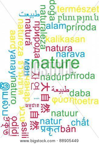 Background concept wordcloud multilanguage international many language illustration of nature