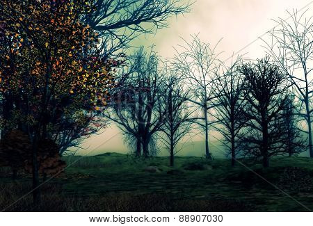 Trees with souls