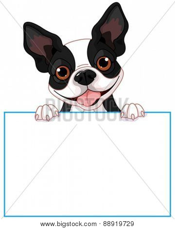 Cute Boston terrier holds a sign