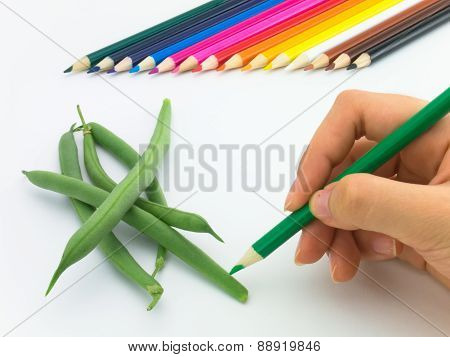 Drawing Green Beans