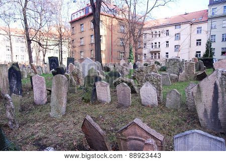 Jewish Cemetery - Prague, Czech Republic