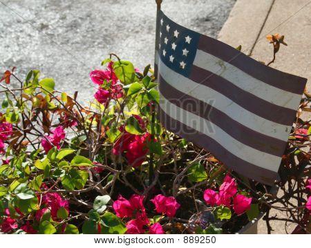 Americana Us Flag & Flowers
