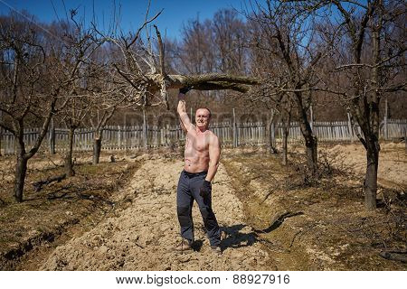 Powerful Man Raising A Tree In An Orchard