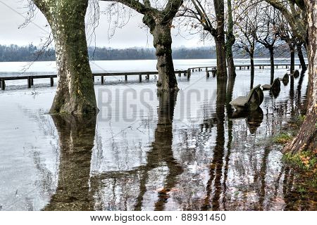 Lake Varese, Overflowing In Gavirate