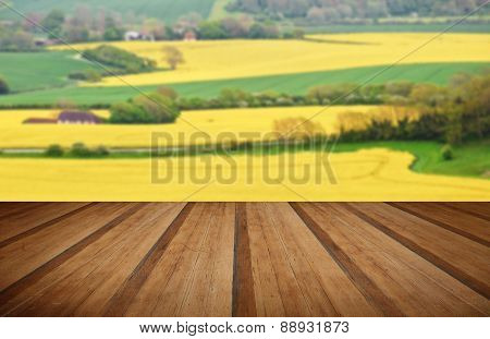 Beautiful Landscape Of Rapeseed Fields Stretching Into Distance With Wooden Planks Floor