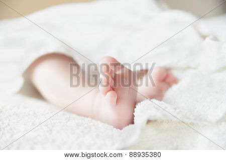 Baby feet on white coverlet. Toes.