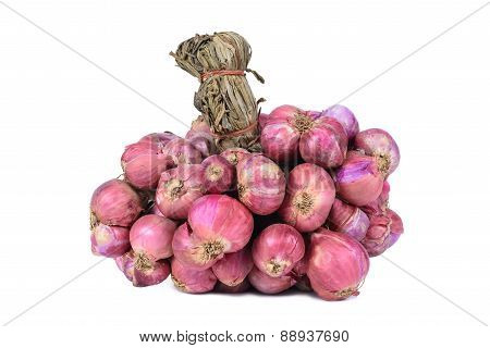 Shallot Onions In A Group Isolated On White Background